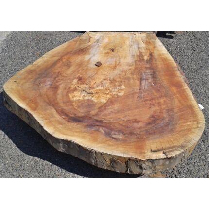 Platánfa rönk fa szelet 1000x900 mm 130 mm vastag kb. 0,7 m2 fa korong 70 sz B