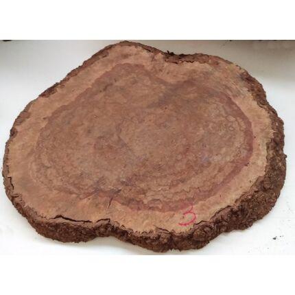 Jarrah fa gyökér 3. sz  40x550x410 mm 7,4 kg
