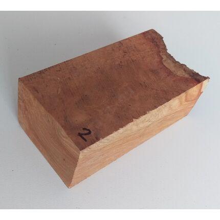 Canistel fa gyökér 50x70x110 mm 2. sz