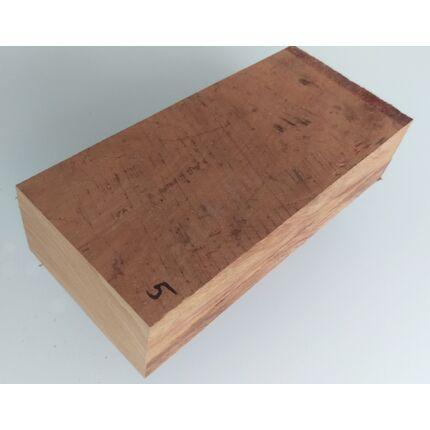 Canistel fa gyökér 50x90x200 mm 5. sz