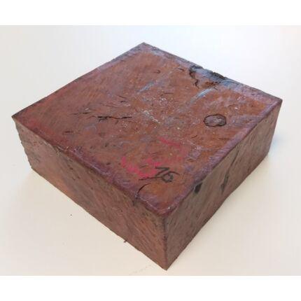 Canistel fa gyökér 50x135x135 mm 16. sz