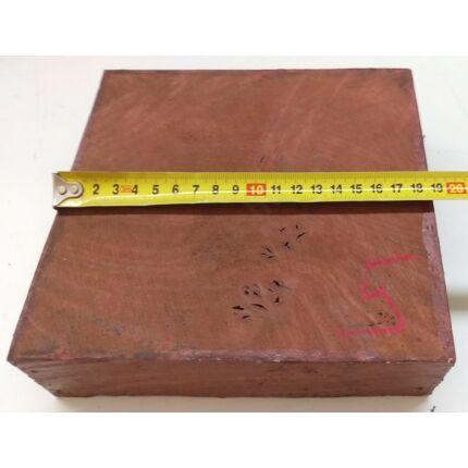 Canistel fa gyökér 50x180x180 mm 17. sz