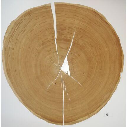Furnérlemez bütü tölgyfa 0,9 mm  átm. 800 mm  1 lap / 0,5 m2 / csomag 4. sz.