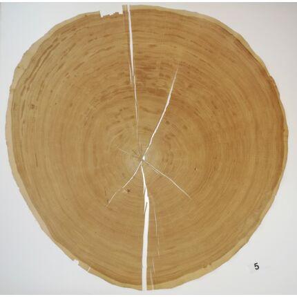 Furnérlemez bütü tölgyfa 0,9 mm  átm. 800 mm  1 lap / 0,5 m2 / csomag 5. sz.
