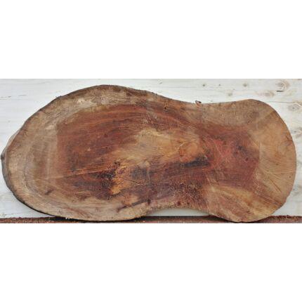 Platánfa rönk fa szelet 1700x700 mm 80 mm vastag kb. 1,4 m2 fa korong 6 sz