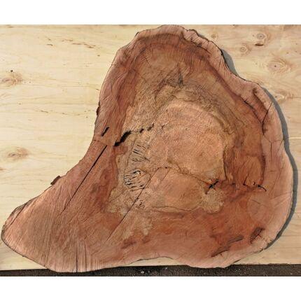 Platánfa rönk fa szelet 1200x1000 mm 30 mm vastag kb. 1,2 m2 fa korong 34 sz