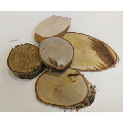 Nyírfa rönk fa szelet   átm. 40-80 mm  5 db vegyes fa korong / csomag