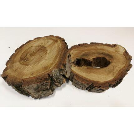 Diófa rönk fa szelet  átm. 150-200 mm 40-80 mm vastag kb. 0,02 m2 fa korong 1. sz