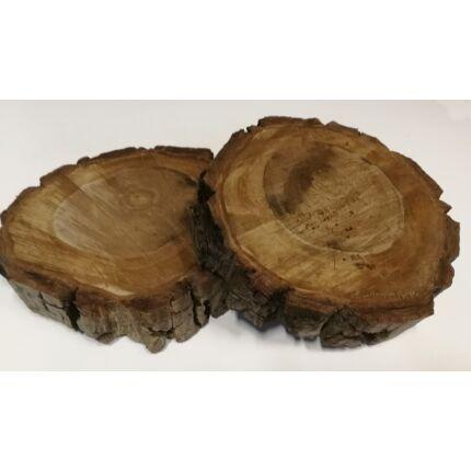 Diófa rönk fa szelet  átm. 250-300 mm 40-80 mm vastag kb. 0,057 m2 fa korong 3. sz
