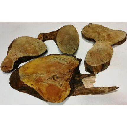 Fenyőfa rönk fa szelet   250x350 mm 30-40 mm vastag 2. sz.