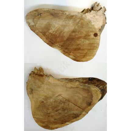 Nyárfa rönk fa szelet  700x500 mm 100 mm vastag 31. sz.