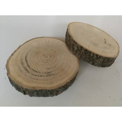 Császárfa rönk fa szelet   200-250 mm 30-50 mm vastag fa korong 1 sz. csiszolt felülettel