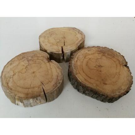 Vegyes fafaj rönk szelet  átm. 200-250 mm 30-50 mm vastag fa korong 10. sz